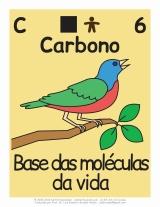 pássaro colorido desenhado