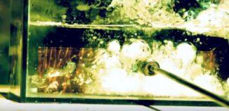 reação de césio metálico com água