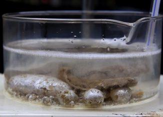 recipiente com óleo mineral e sódio metálico