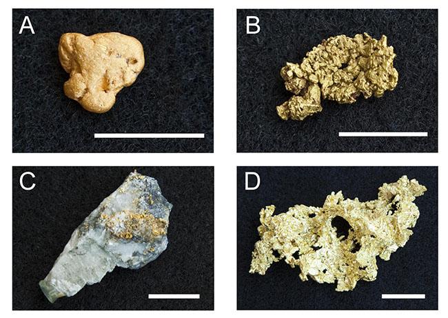 4 pedaços de rocha com ouro