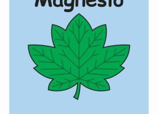 a clorofila contém o elemento magnésio