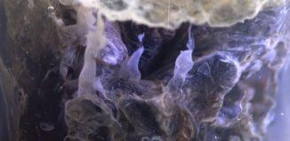 elemento vanádio em belo produto